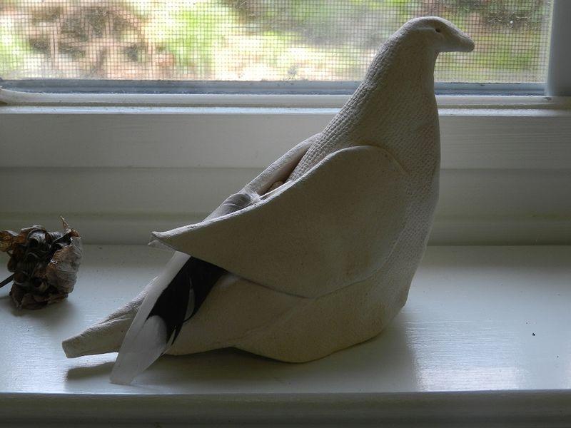 100665-Dove
