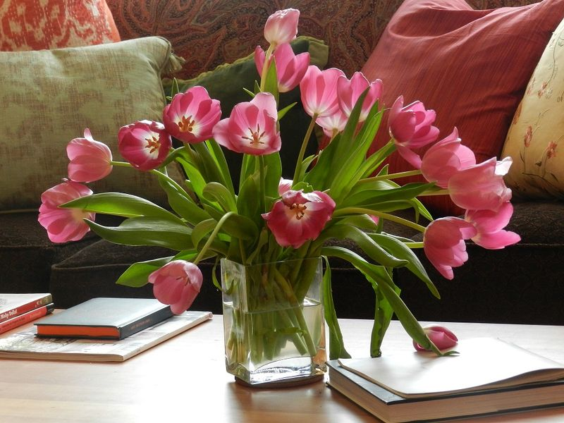 100082-bouquet of pink tulips