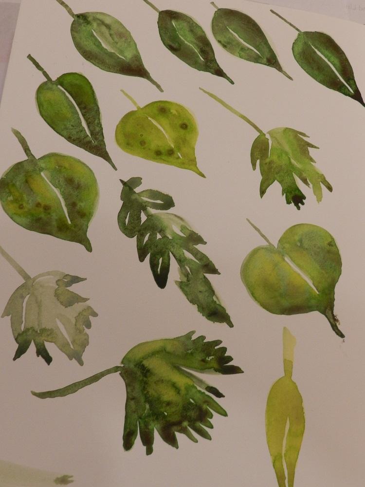 1000399-leaves