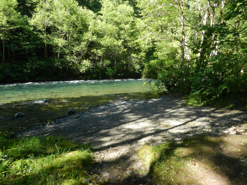1000447- McKenzie River Campsite