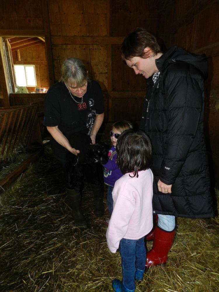 100063-Petting the black lamb